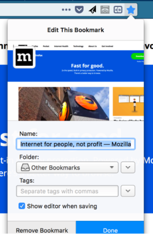 The bookmark panel in Firefox, showing a screenshot of the page being bookmarked.